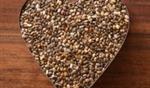 זרעי ציה- מזון מופלא!