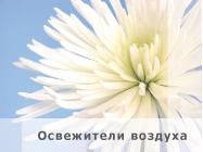 air_freshener.jpg