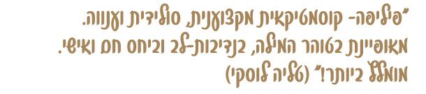 text_banner.jpg