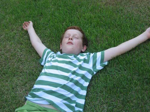 טל בדשא.jpg